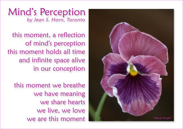 Mind's Perception 2