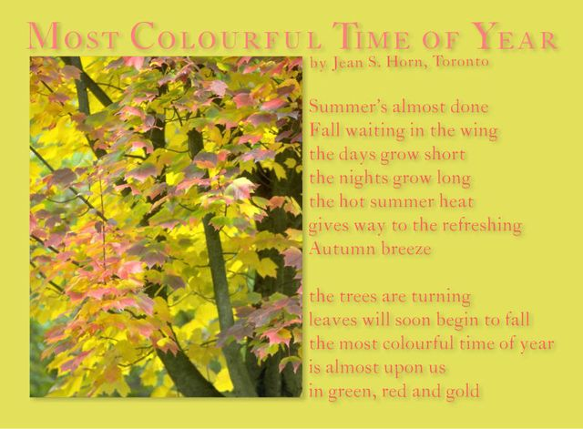 Most Colourful Time of Year 2