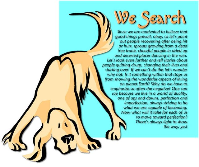 We Search 2