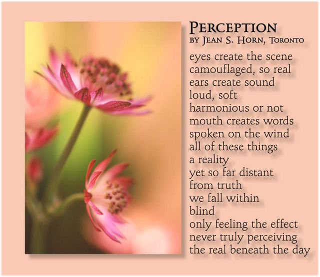 Perception 2