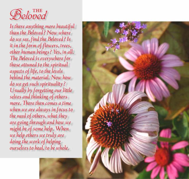The Beloved 7 2