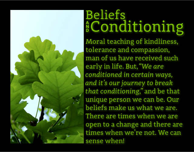 Beliefs And Conditioning 2