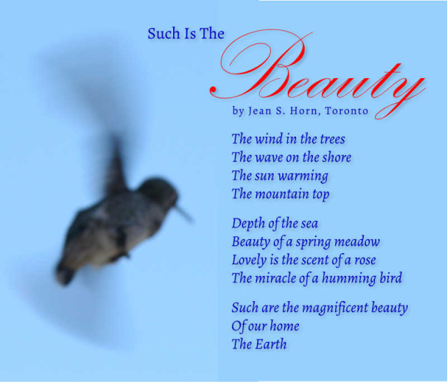 Such Is The Beauty 2
