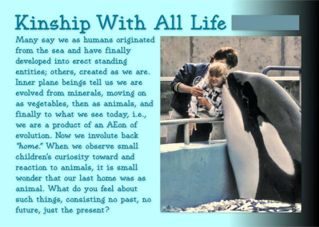 Kinship With All Life 7 2