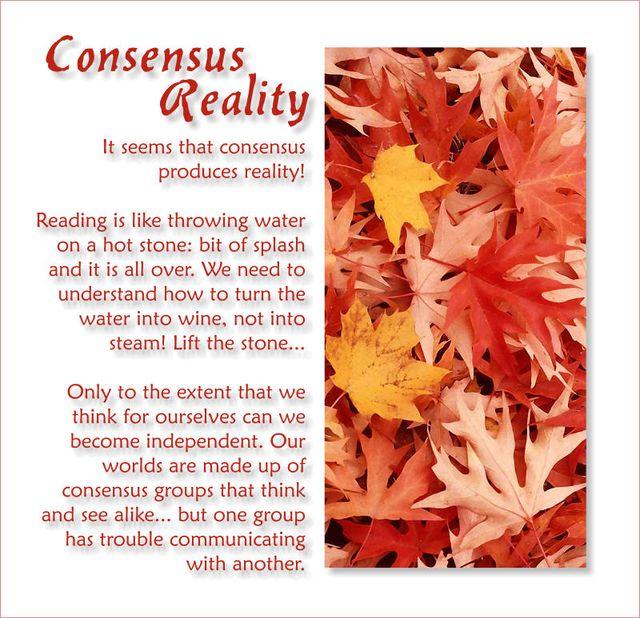 Consensus Reality 2
