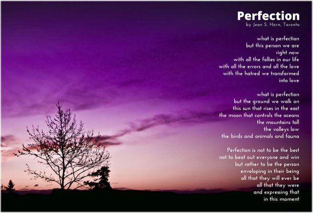Perfection 13 2