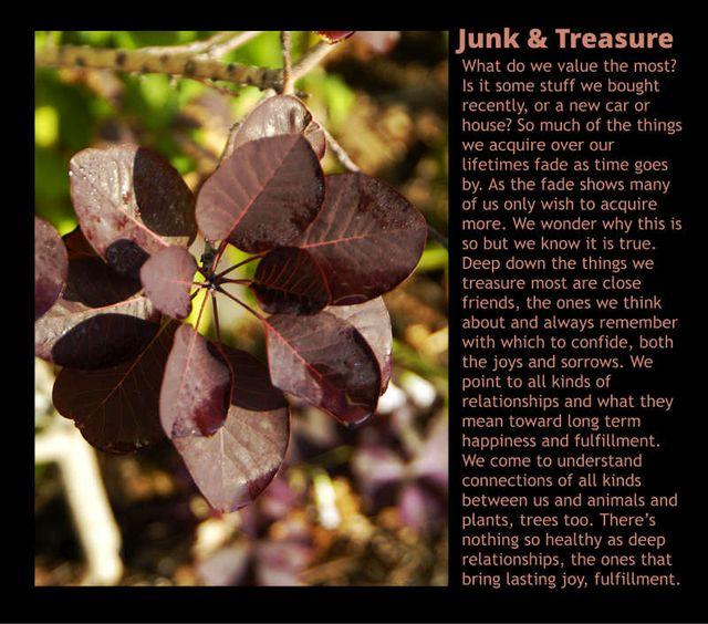 Junk & Treasure 2
