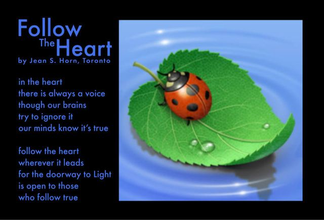 Follow The Heart 2