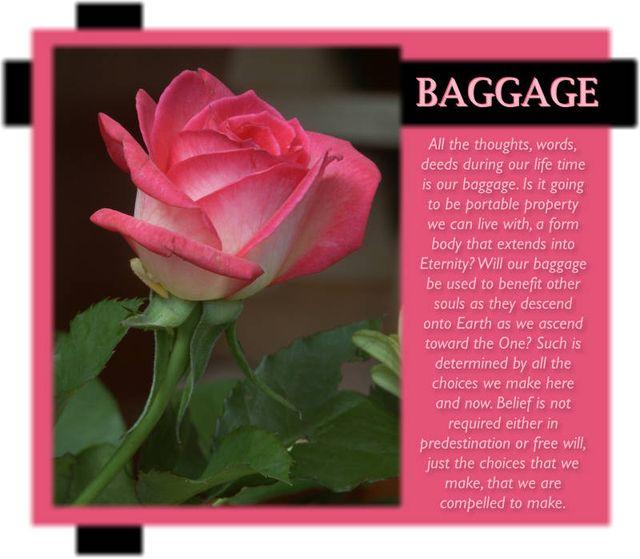 Baggage 7 2