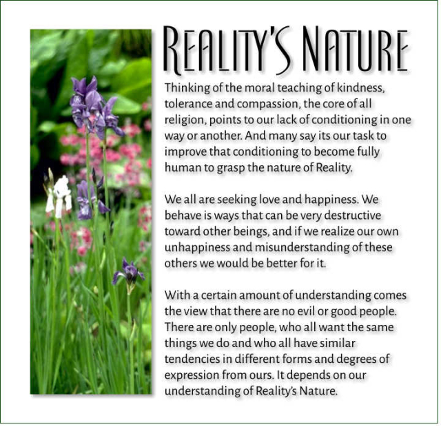 Reality's Nature 2