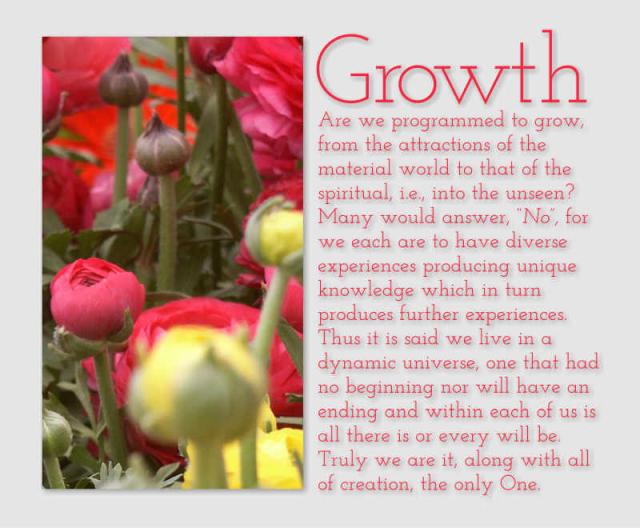 Growth 11 2