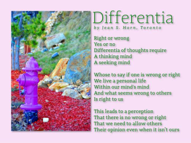Differentia 2