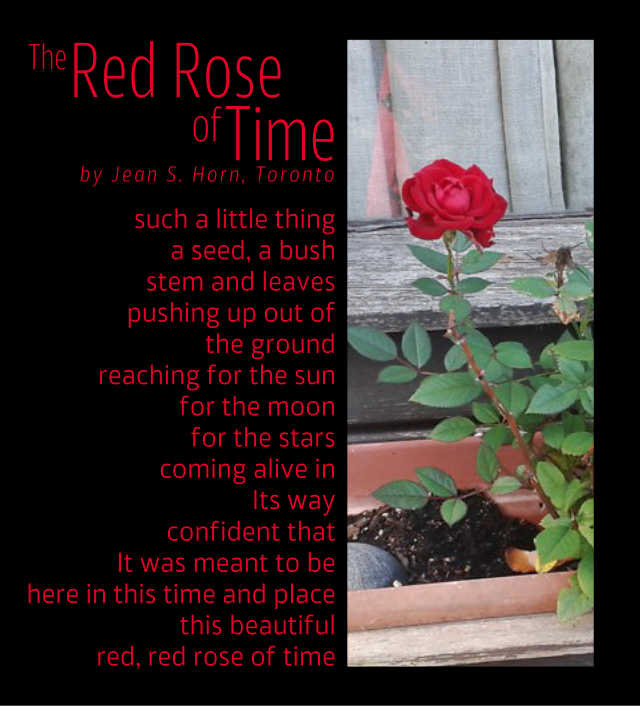 The Red Rose of Time 2