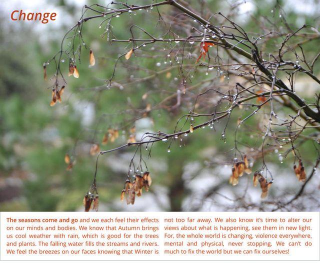 Change 15 2