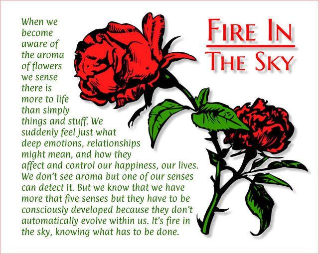 Fire In The Sky 2