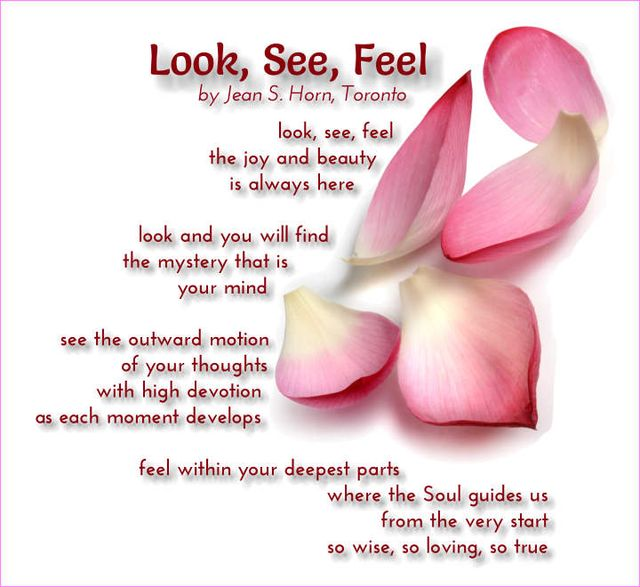 Look, See, Feel 2