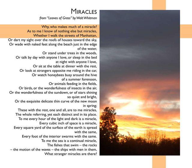 Miracles 7 2