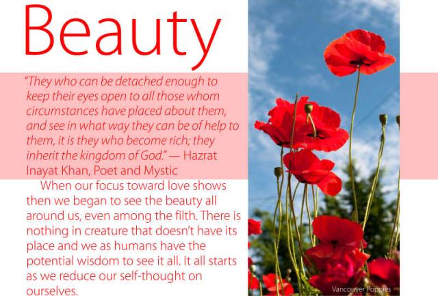 Beauty 13 2