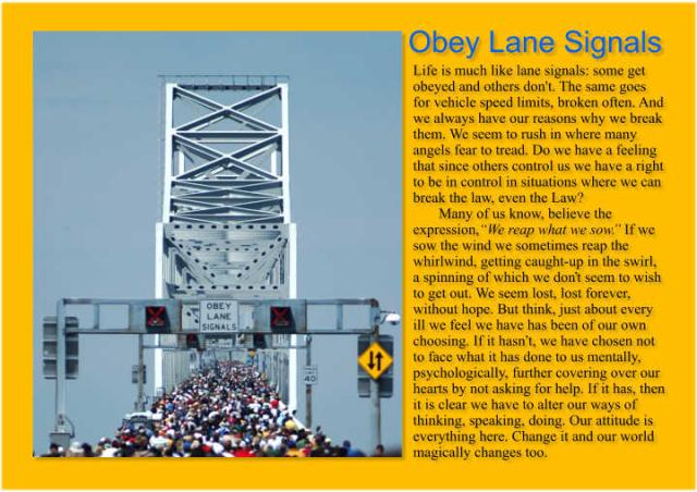 Obey Lane Signals 2