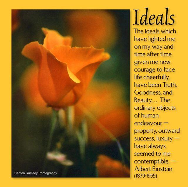 Ideals 2