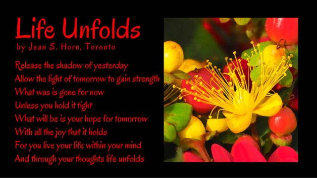 Life Unfolds 2
