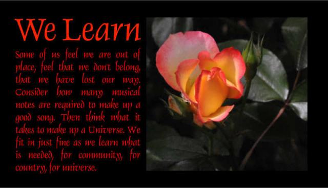 We Learn 2