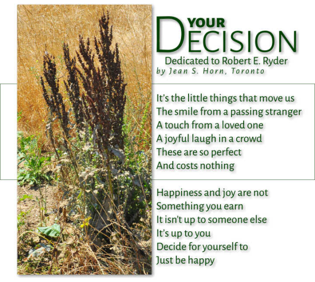 Your Decision 2