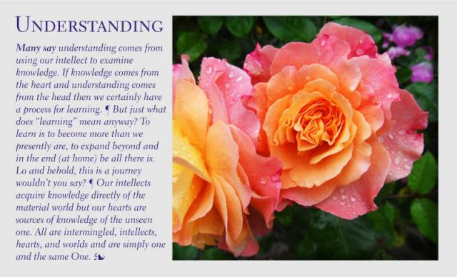 Understanding 7 2