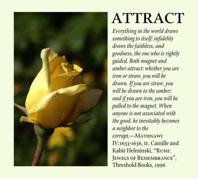 Attract 2