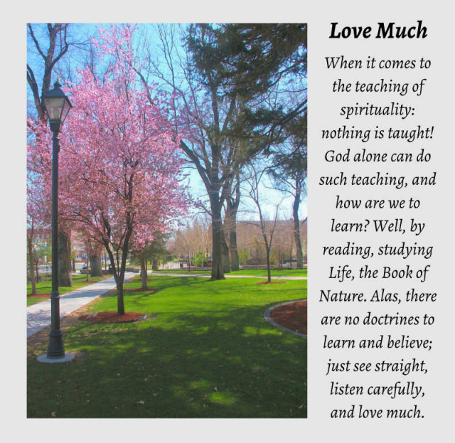 Love Much 7 2